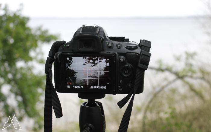 Kamera auf Stativ, man sieht die Landschaft auf dem Display. Es ist eine Küste, umrahmt von Ästen
