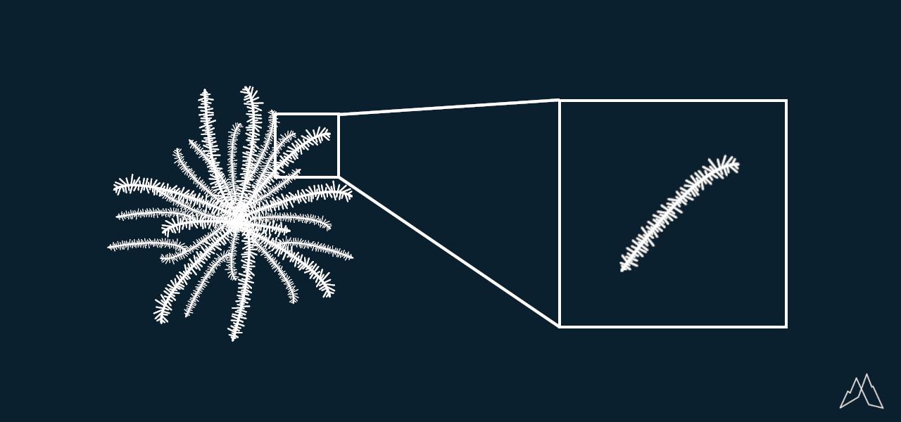 Aufbau einer Daune (schematisch)