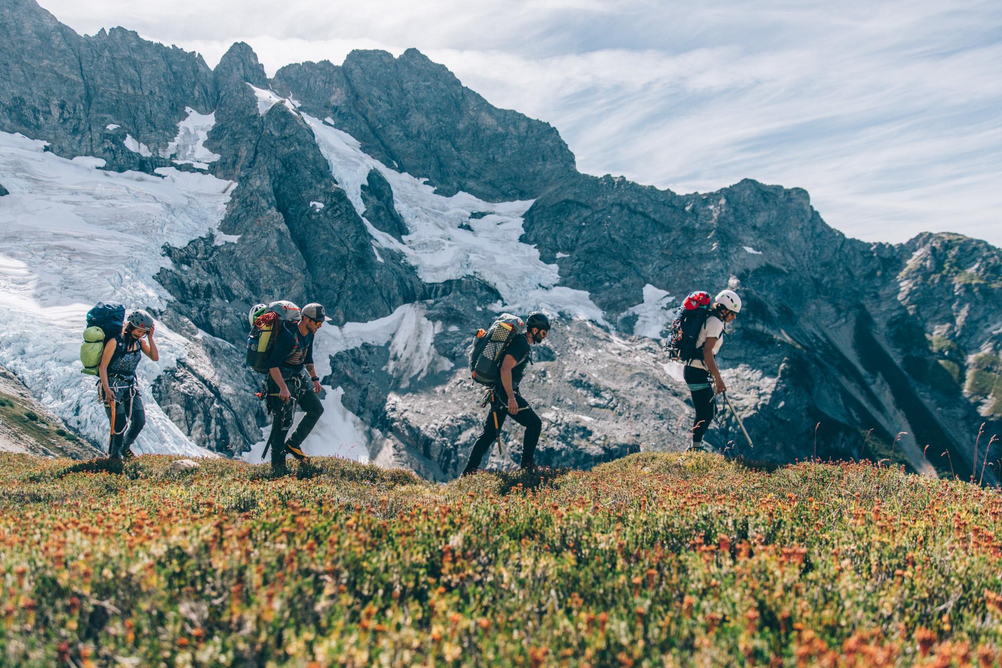 Vier Wanderer laufen in einer Reihe mit vollgepackten Rucksäcken und Ausrüstung an der Kamera vorbei. Blumen blühen im Vordergrund. Im Hintergrund ist eine schneebedeckte Bergkette mit Gletscherzungen zu sehen.