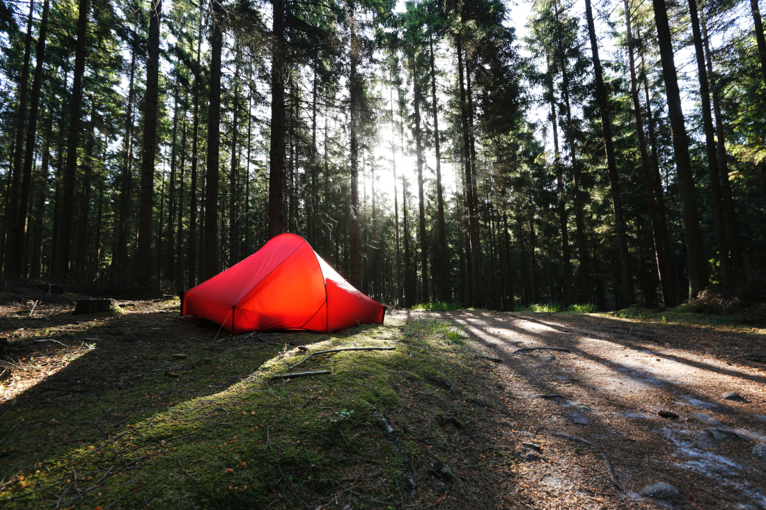 Ein rotes Nordisk Zelt im Nadelwald